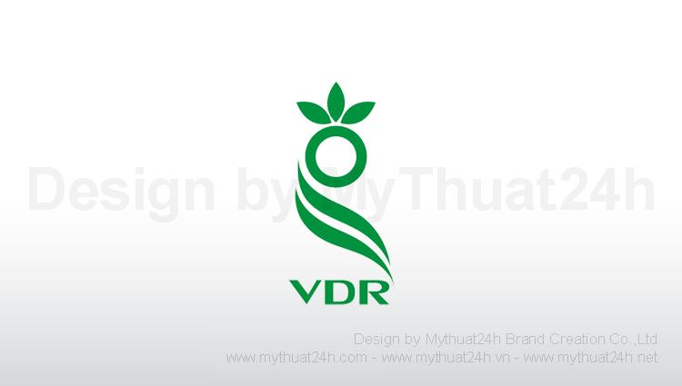 Thiết kế logo Cty TNHH thương mại và dịch vụ Rồng Việt