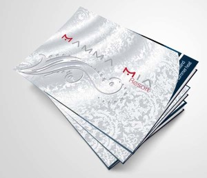 Mau-thiet-ke-catalogue-an-tuong (15)